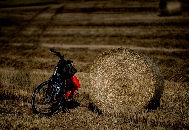 1 Arriving by Cycle to amusement of farmers