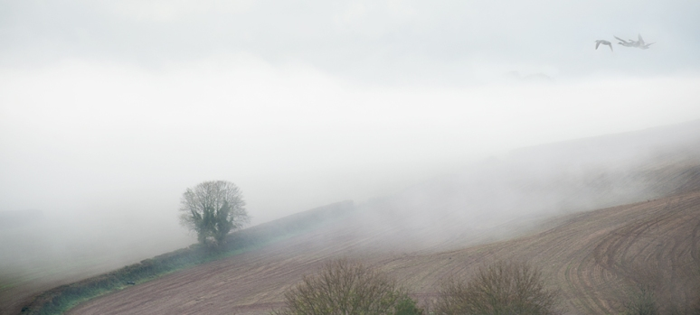 Mist rolling in from river beyond