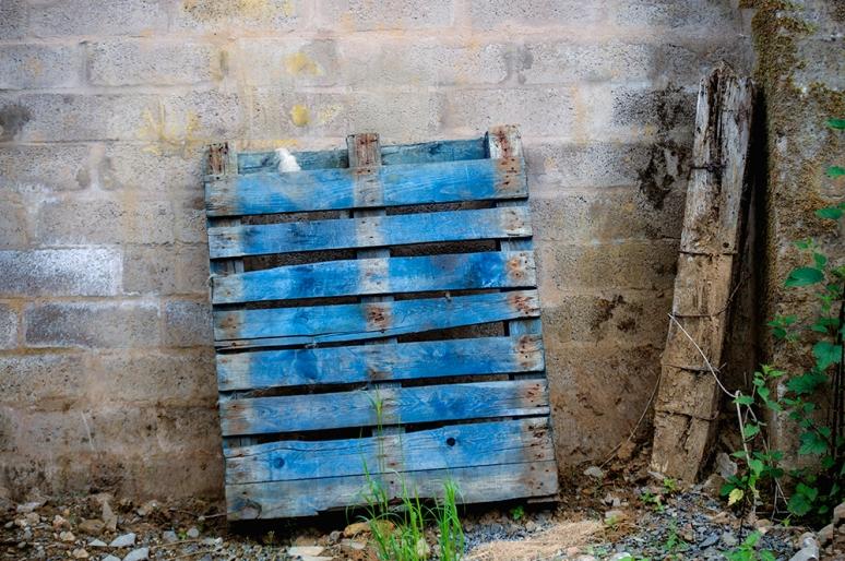 Blue-Pallet