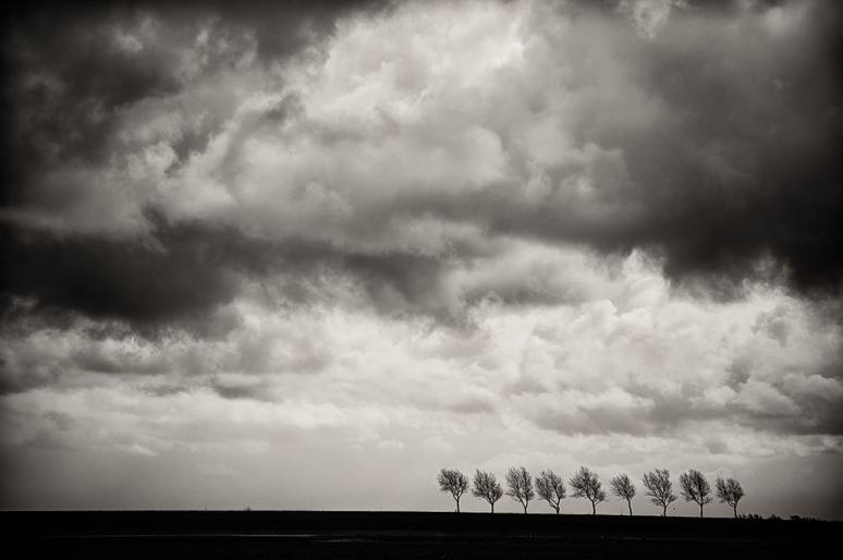 Zeeland-blustery-landschape
