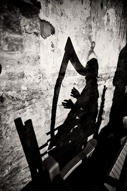 The-Harp-Shadow2
