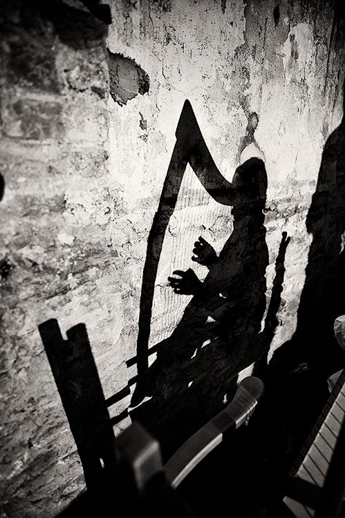 The-Harp-Shadow2