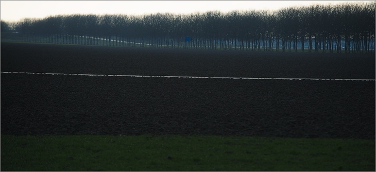 Dutch-Polder-landscape