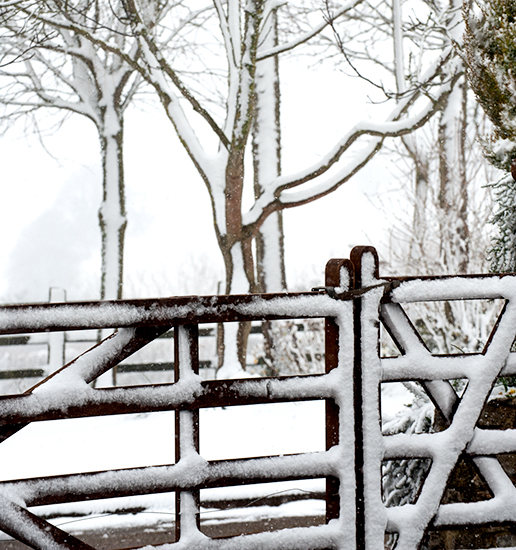 Gate-in-Snow