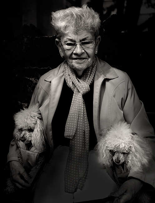 Owner-and-dogs